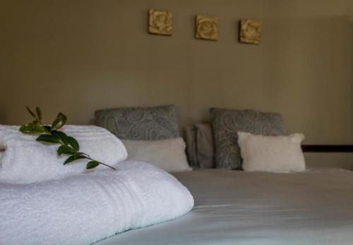 Room 8 - DeCaledonHuis